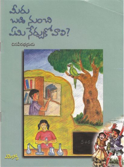Meeru Badi Nunchi Emi Nerchukovali Telugu Book By Chinaveerabhdrudu